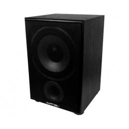 active subwoofer 100W...