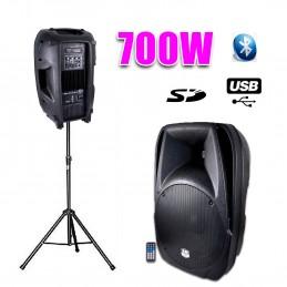 "Active speaker 12 ""700W..."