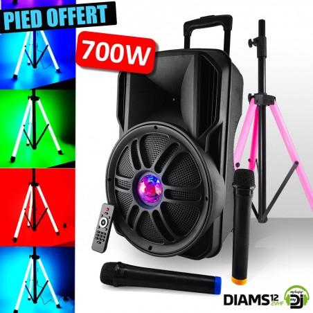 Speaker sound system battery 12 '' 700W - Friztal LED effect - USB / SD / BT / FM + Mic 2 VHF + LED Foot