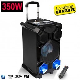 Système SOUND BOX SPLBOX350-PORT à LED Portable Autonome 350W avec USB SD Bluetooth Radio FM / REC / MEGA BASS