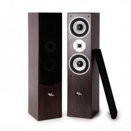 Paire d'enceintes Hifi/Home-Cinéma - Evidence Acoustics EA700-WAL -  2x500W PMPO - Bass Reflex à 3 voies - Noyer/Acajou